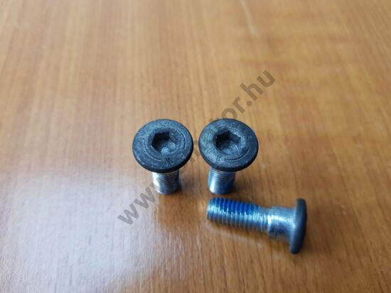 Aprilia RX, SX 50 Hátsó féktárcsa csavarok